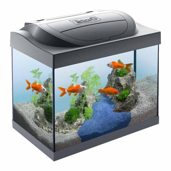 Tetra Goldfish Akvarijum 30l LED